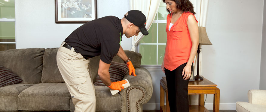 Denton, TX carpet upholstery cleaning
